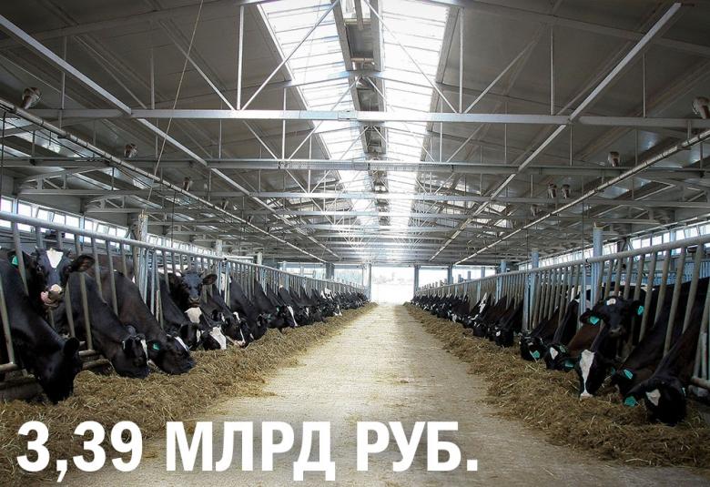 «Молоко Черноземья» построит самую крупную ферму в Воронежской области