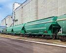 Запасы зерна за месяц выросли в 2,3 раза – до 31,4 млн тонн