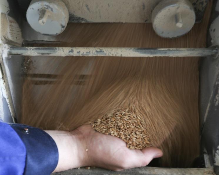 Зерновые интервенции откладываются на2018 год