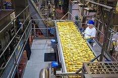 PepsiCo построит завод снеков за 12 млрд рублей