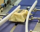 «Великолукский молочный комбинат» увеличит выпуск сыров до10 тысяч тонн вгод