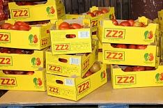 Минсельхоз намерен увеличить квоту на ввоз турецких томатов