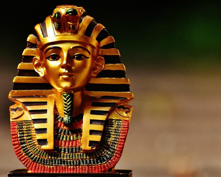 Египет не будет применять требование «нулевой спорыньи» к российской пшенице