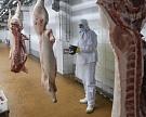 «Агропромкомплектация» запустила крупный мясоперерабатывающий комплекс