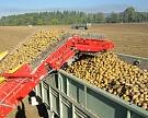 Рынок картофельной техники будет расти