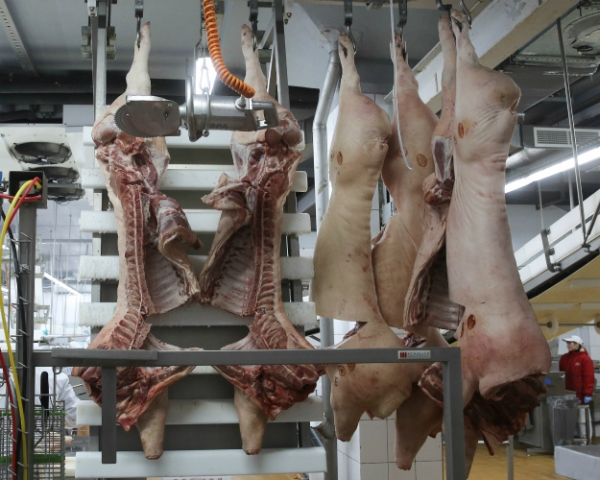 «Всеволожский мясной двор» вкладывает 500млнруб. встроительство мясоперерабатывающего завода