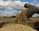 Минсельхоз: в 2017 году урожай зерна превысит 100 млн тонн
