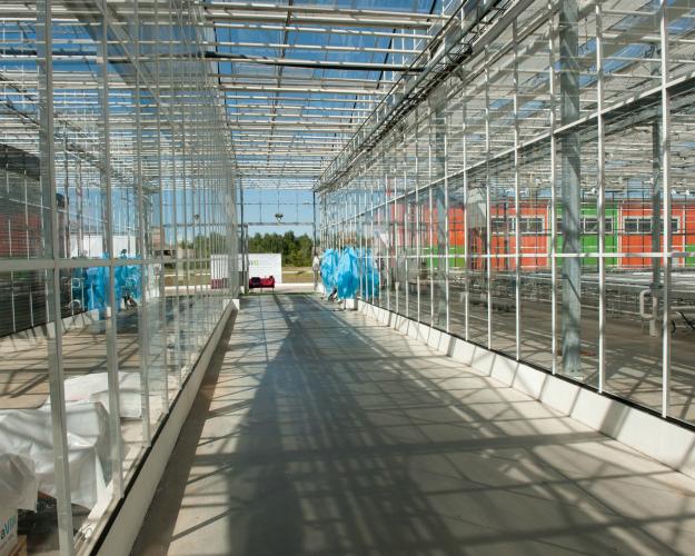 Под Липецком появится тепличный комплекс в33 гектара