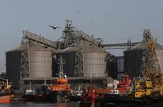 «Транснефть» хочет создать единого зернового оператора на юге страны