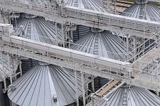 Запасы пшеницы на четверть ниже прошлогодних