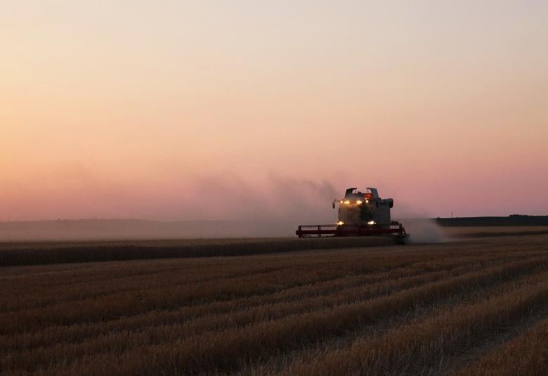 Уборка зерна началсь позже, чем в 2014-м