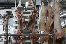 Топ-20 компаний произвели почти 2,4 млн тонн свинины