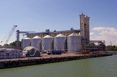 Экспорт зерна в октябре составит 4,7 млн тонн