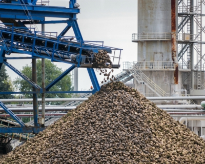 Инвестиции без перспектив: за10 лет были озвучены планы строительства 30 новых сахарных заводов