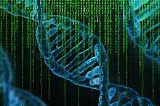 В России путем геномного редактирования создадут 30 растений и животных