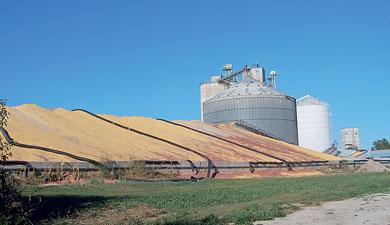 Зерно— государству
