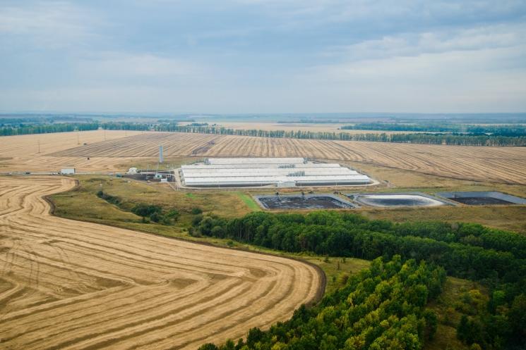 «Мираторг» построит свинокомплексы в Брянской и Орловской областях