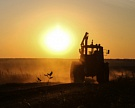 На грани потери доходности: средства сельхозпроизводства продолжают дорожать на фоне сокращения выручки аграриев