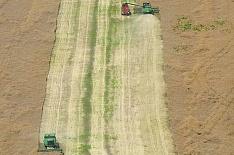 Сельхозпроизводство возобновило снижение в ноябре