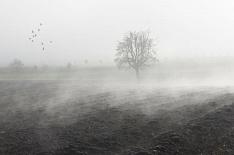 Сибирские регионы вводят режимЧС из-за срыва посевной