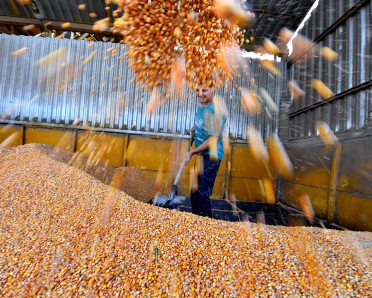 Событие года, Январь 2018: Сельхозпроизводство увеличилось на 2,5%