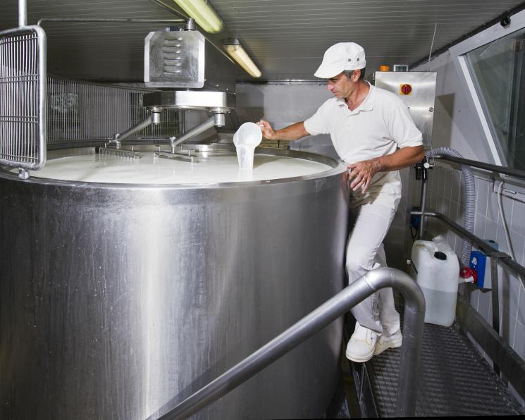 Средняя цена молока в этом году приблизится к уровню 2017 года