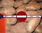 Белоруссия вводит ограничения напоставки европейского картофеля