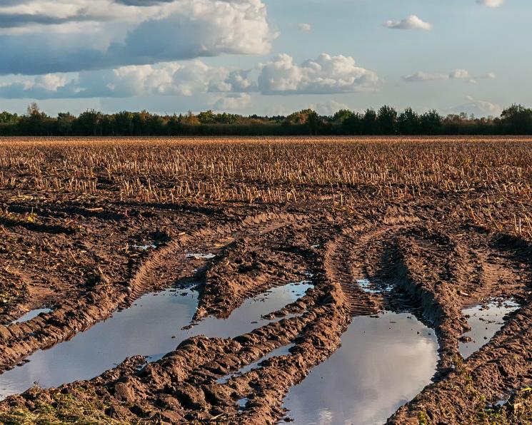 Госдума вернет аграриям погектарные субсидии