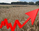 Башкортостан увеличит субсидии на весенние полевые работы на 14%