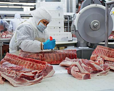 Промышленное свиноводство выросло на320 тыс. тонн