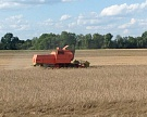 Украина наращивает экспорт зерна