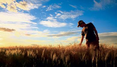 Новый сельхозгод будет тяжелым