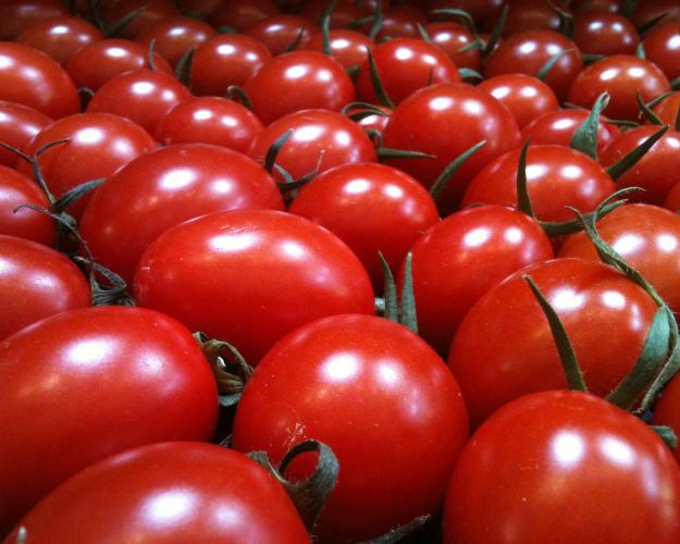 Россия значительно увеличила экспорт овощей исахара