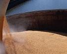 Cначала сельхозгода Россия экспортировала 900 тыс. тзерна