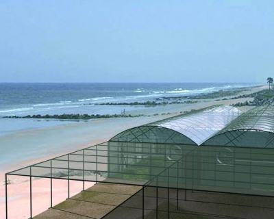 Теплицы с морской водой спасут от засухи