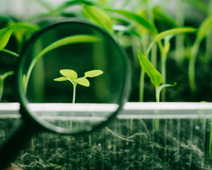 Борьба с истощением. Биологизация способна вывести агропроизводство на новый уровень