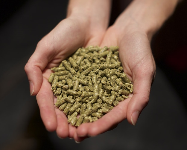 Топ-20 производителей выпустили 12,6 млн тонн комбикормов
