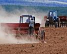Сбор зерна уже превысил 75 млн тонн