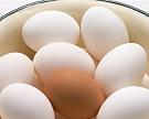 Птицеводческие предприятия обеспечивают рынок яйцами и мясом птицы почти полностью