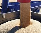В Белгородской области построят 2 новых зерносушильных комплекса