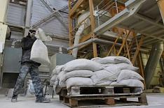 Россия экспортировала рекордный объем кормов