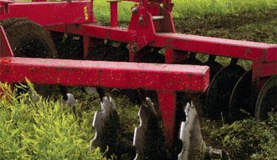 МичГАУ выращивает зерно без удобрений