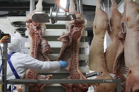 Потребление свинины выросло из-за падения цен