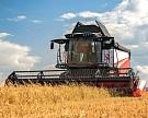 Правильная «уборочная»: характерные ошибки при выборе зерноуборочного комбайна