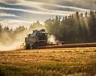 Россия вступила в новый сезон с запасами зерна в 15,4 млн тонн