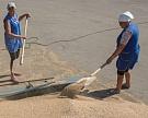 Сезонный рост предложения зерна негативно влияет намировые цены