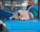 Мясной сектор вырастет на 3%