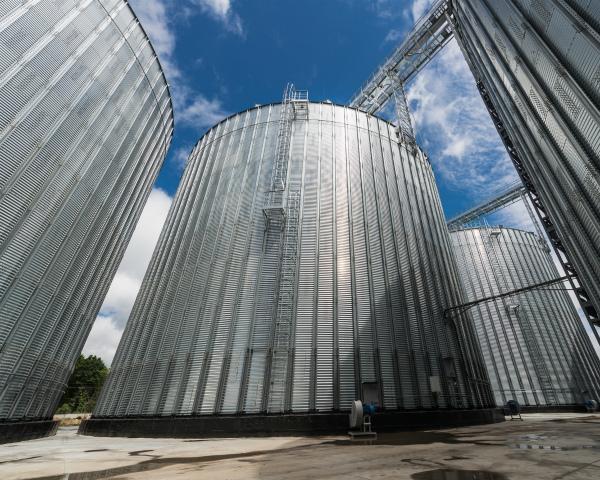 Дефицита не будет? Хватит ли России мощностей для хранения рекордного урожая зерна