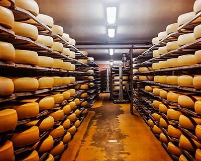 Какой сыр созрел после эмбарго