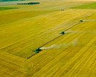 Итоги первой половины зернового сезона